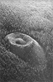 newish crater, 100 km NW of Kulik's site
