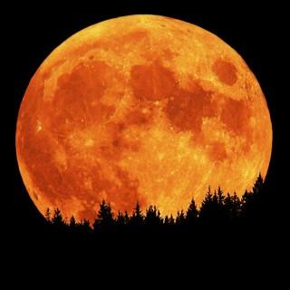 http://whoyoucallingaskeptic.files.wordpress.com/2009/08/full-moon-3.jpg